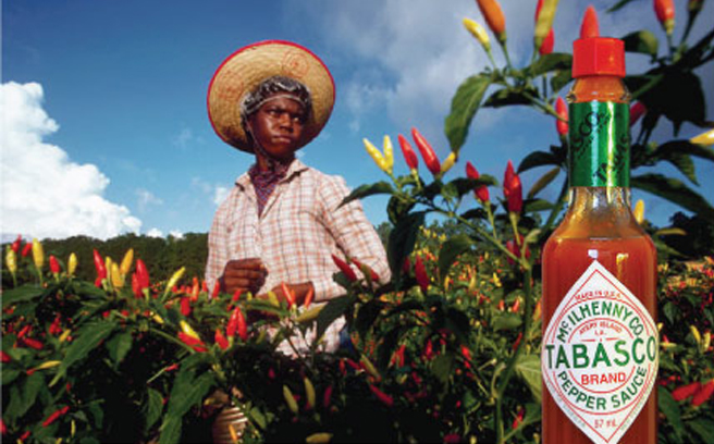 tabasco-sauce bar.it