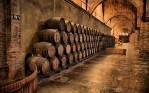 vino biologico bar.it
