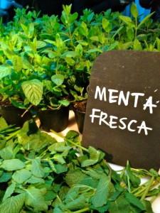 La menta fresca è prodotta in grande quantità in Colombia, e poi esportata in tutta europa