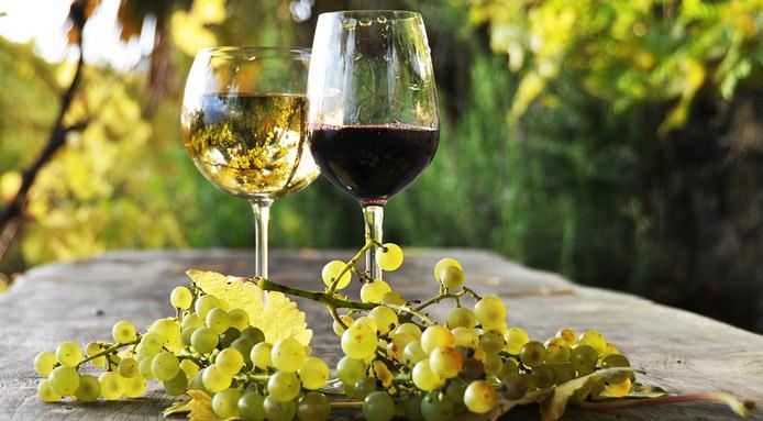 vino-italiano bar.it