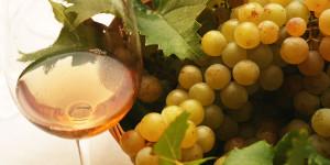 Vino moldavo scadente spacciato per Moscato e Pinot