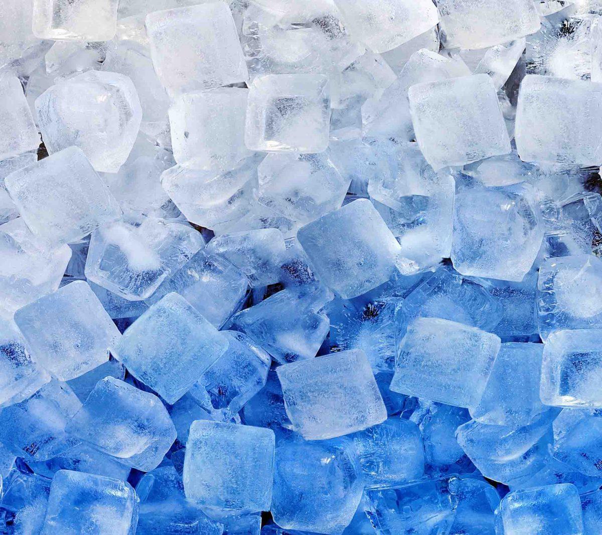 attrezzature frigo