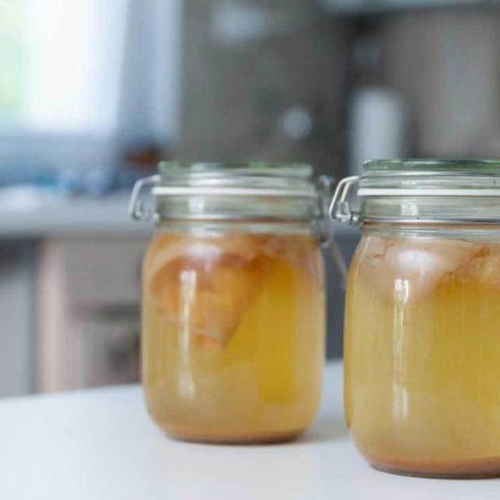 scienza delle fermentazioni