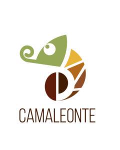 Guida del Camaleonte